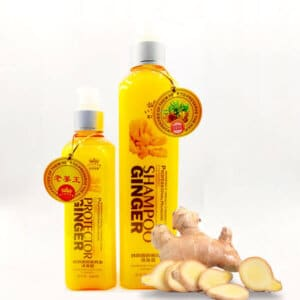 Protector Ginger Shampoo Price in Bangladesh